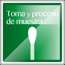 Toma y proceso de muestra-04