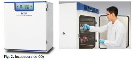 incubadora de gases